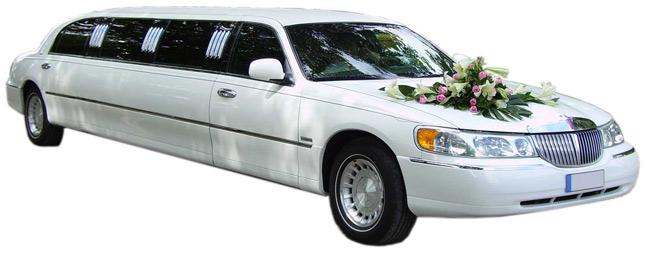 limu1